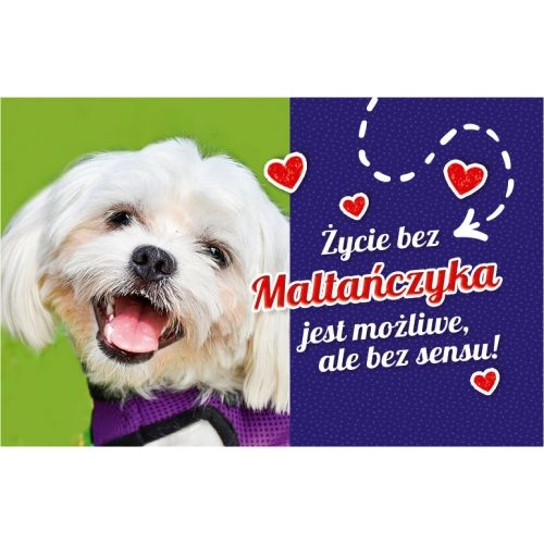 Maltańczyk